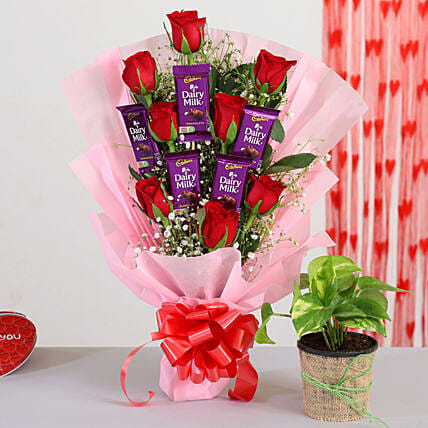 Red Roses Bunch With Money Plant Chocolates:Flowers N Plants