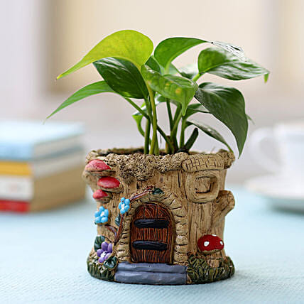 Resin Potted Money Plant