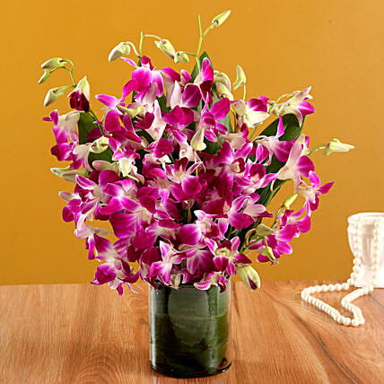Orchids in a Vase Online:Purple Flowers