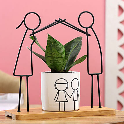 Sansevieria Plant With Cute Boy Girl Figurine