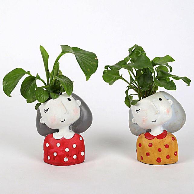 Set of 2 Lively Plants In Raisin pots