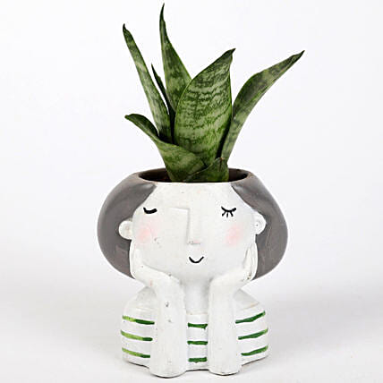 sansevieria plant in custom girl shape pot:Resin Planters