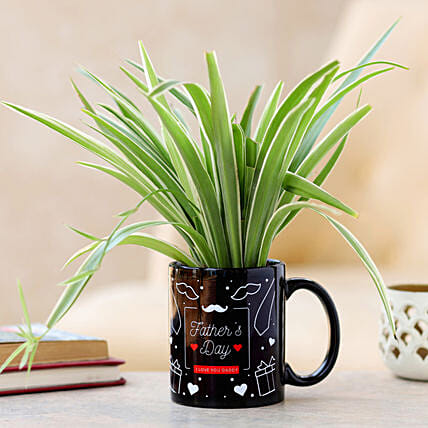 plant in mug for fathers day:Mugs Planters