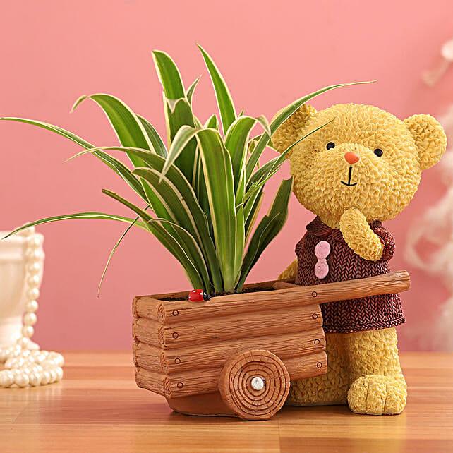 Spider Plant In Yellow Bear Cart Ceramic Pot:Wildlife Art planters