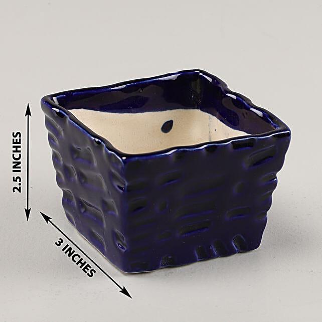 Online Ceramic Blue Planter