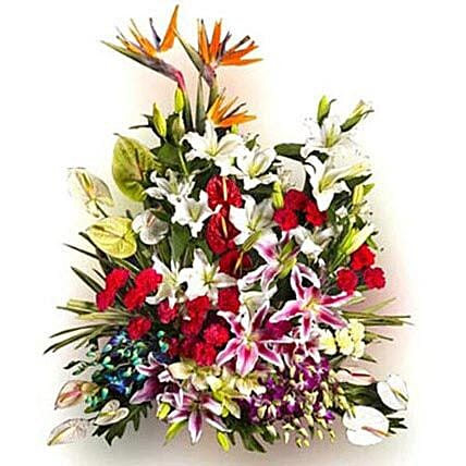 Stupendous Love - 3 bird of paradise, 6 white oriental lilies, 4 pink oriental lilies, 2 white asiatic lilies, 4 green anthuriums, 6 white anthuriums, 4 red anthuriums, 10 purple orchids, 6 blue orchids, 20 red carnations, 6 yellow carnations.