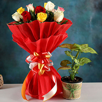 Send Syngonium Plant And Rose Bouquet