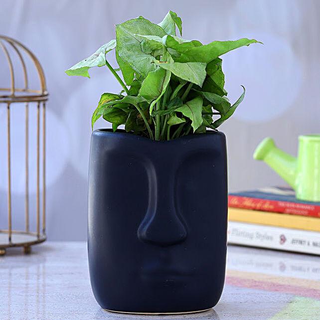 Syngonium Plant In Face Shaped Ceramic Pot