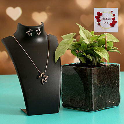 Syngonium Plant In Glass Vase With Jewellery Set V Day Tag