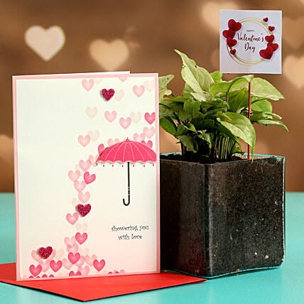 Syngonium Plant In Glass Vase With V-Day Tag & Greeting Card Hand Delivery