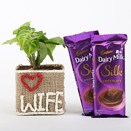 Chocolate and Plant Combo for Wife