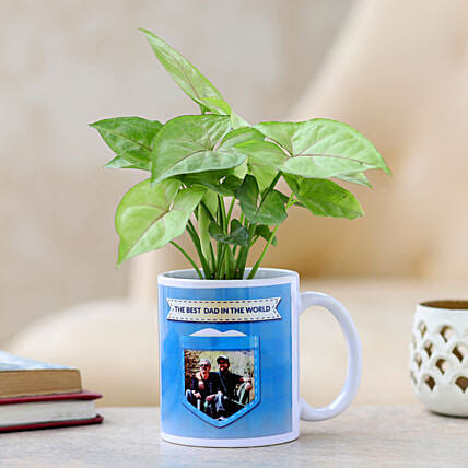 plant with mug planter for fathers day