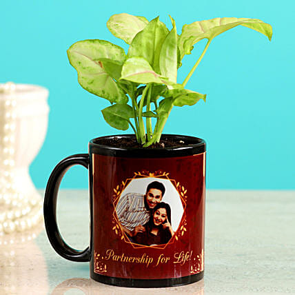 Karwa Chauth Plant Gift for Him:Buy Personalised Planter