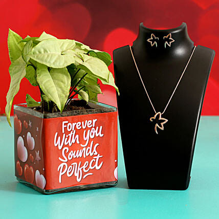Syngonium Plant In Sticker Vase With Jewellery Set Hand Delivery:Valentines Day Jewellery