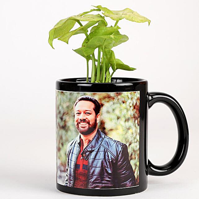 plant in black mug