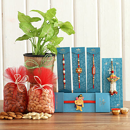 online Syngonium Plant & Nuts With Set Of 5 Rakhis
