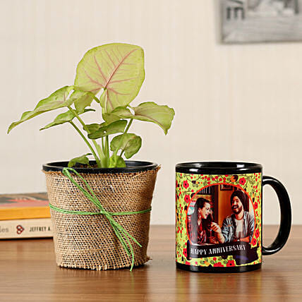 online indoor plant with printed mug