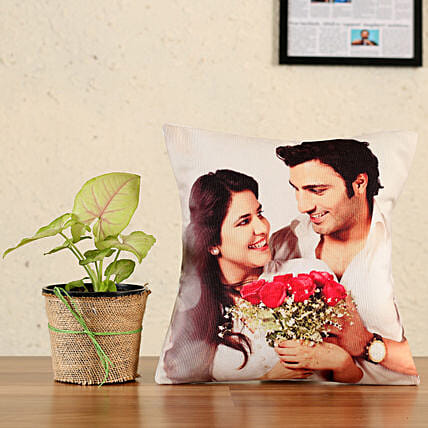 plant with printed cushion combo
