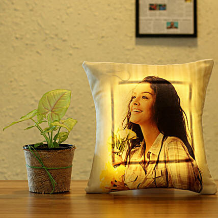 online plant with led cushion