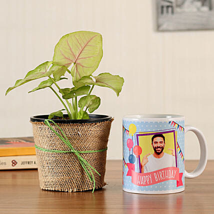 indoor plant with printed mug online