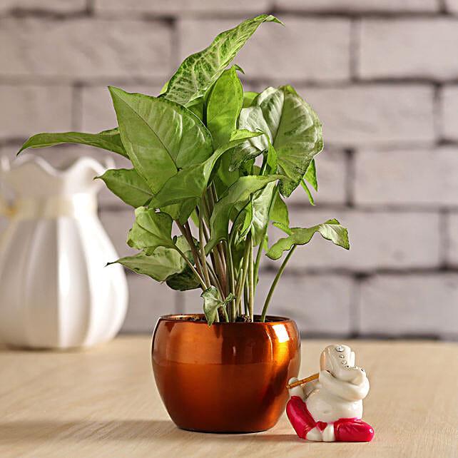 Syngonium Plant & Serene Flute Ganesha Idol