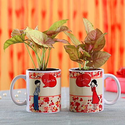 Printed Plant Mug for Valentine's Day:Mugs Planters