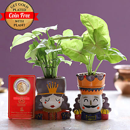 Online Syngonium Plant Set And Gold Plated Coin:Resin Planters