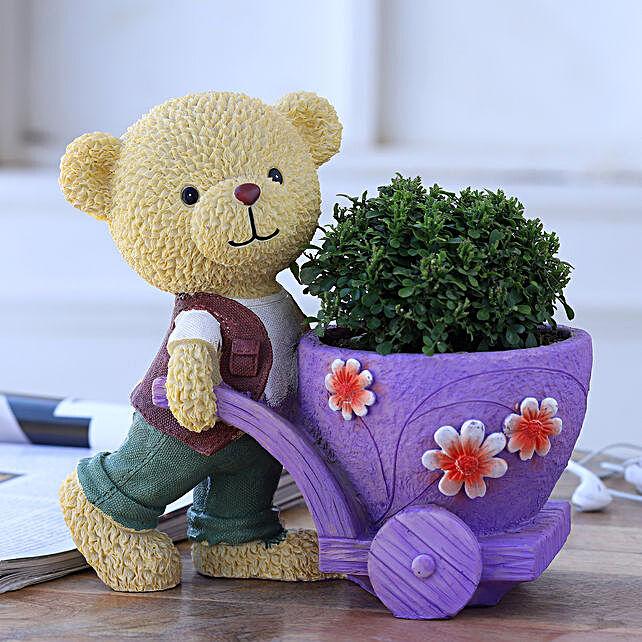 Table Kamini Plant In Bear Cart Pot