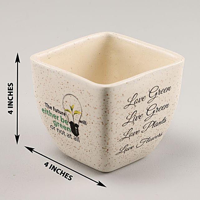 Online Think Ceramic Pot