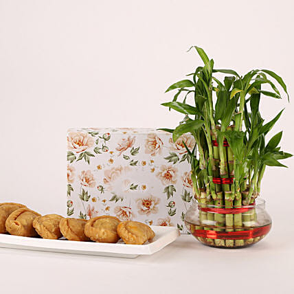 Ghujia and Plant Gift Combo for Holi