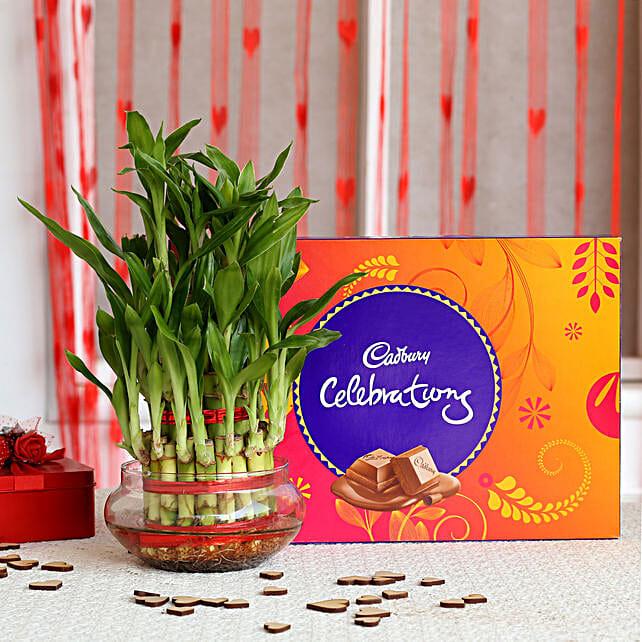 Bamboo Plant N Chocolate Valentine Online