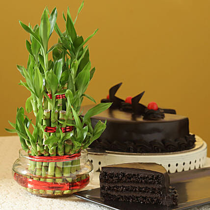 3 Layer Bamboo with Cake:Gift Combos For Father's Day