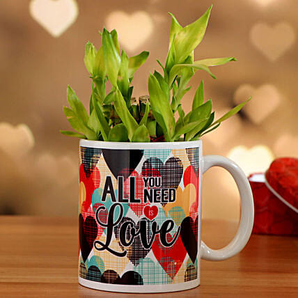 Two Layer Bamboo In Need Love Mug Hand Delivery:Valentines Day Lucky Bamboo