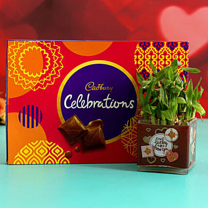 Two Layer Bamboo In Sticker Vase & Cadbury Celebrations Hand Delivery:Plant Combo For Valentines Day