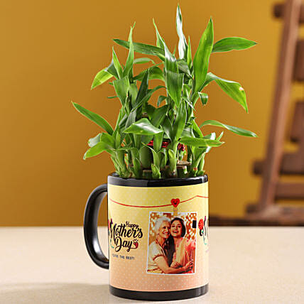 Two Layer Bamboo Plant In Happy Mother Day Mug:Personalised Pot plants for Mothers Day