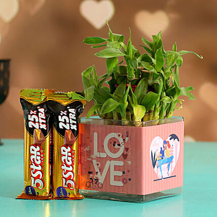 Two Layer Bamboo Plant In Love Sticker Vase 5 Star
