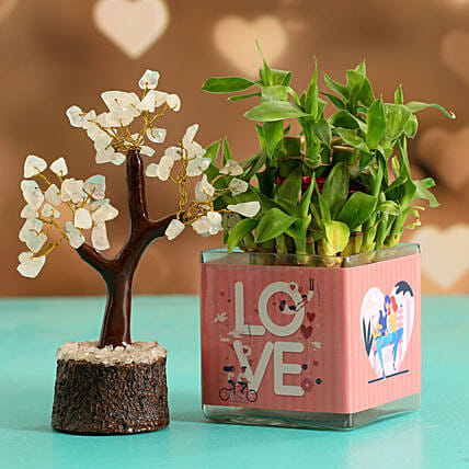 Two Layer Bamboo Plant In Love Sticker Vase Wish Tree