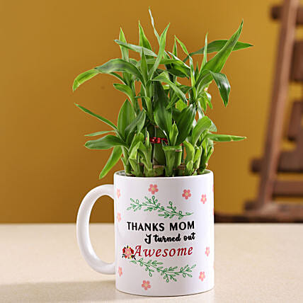 Two Layer Bamboo Plant In Mother Day Special Mug