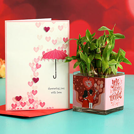 Two Layer Bamboo Plant In Sticker Vase & Greeting Card Hand Delivery