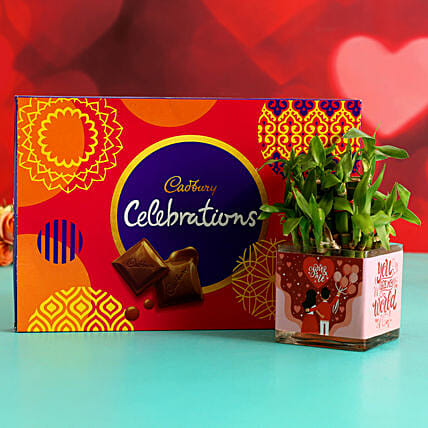 Two Layer Bamboo Plant In Sticker Vase Cadbury Celebrations:Send Lucky Bamboo for Anniversary