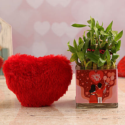 Two Layer Bamboo Plant In You N Me Vase & Red Heart:Soft toys to Hyderabad