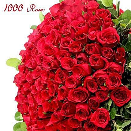 Unfathomable love-1000 red roses:Send Thanks Giving Day Flowers