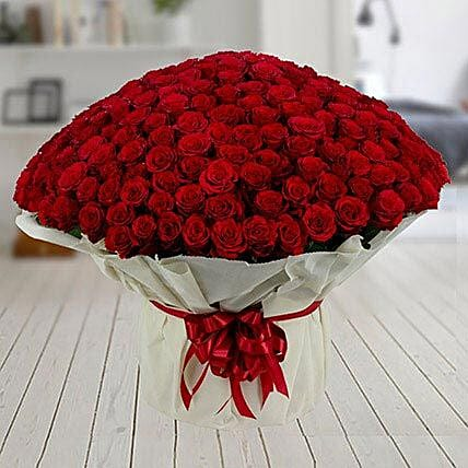 Bunch of 500 red roses