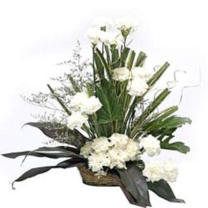 Cool Classic - Basket Arrangement of 20 White Carnation.