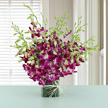 Exotic Expression - Arrangement of 20 purple orchids in glass vase.:Good Luck Flowers