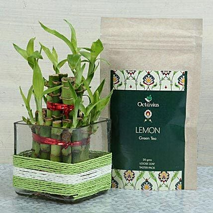 Two layer bamboo in a square glass vase, green and white raffia and octavius lemon green tea