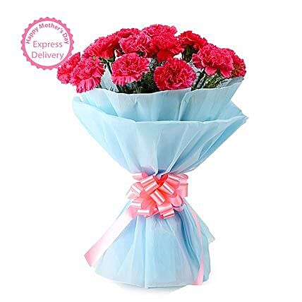 Mothers Day Spl Carnation Carnival by FNP
