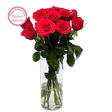 Mothers Day Spl Rose Delight by FNP