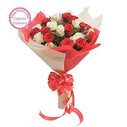 Mothers Day Spl Two Dozen Roses by FNP