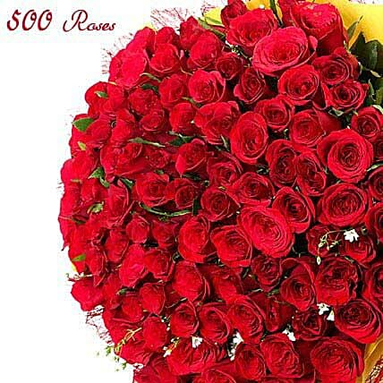 Sentimental love-500 red roses